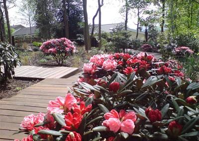 Classic-Garden-4