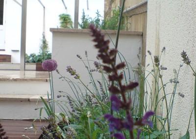 Contemporary-Garden-6